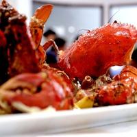 Kepiting Chef Epi